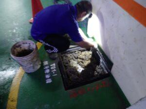換化糞池蓋